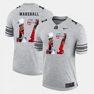 Ohio State Buckeye #17 For Men's Jalin Marshall Jersey Gray Official Pictorital Gridiron Fashion Pictorial Gridiron Fashion 139291-607