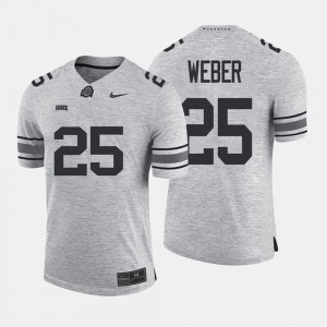 OSU Buckeyes #25 For Men's Mike Weber Jersey Gray College Gridiron Gray Limited Gridiron Limited 878520-520